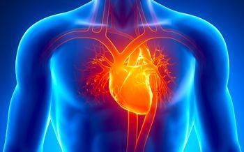 4 Cara Menguji dan Merawat Kesehatan Jantung