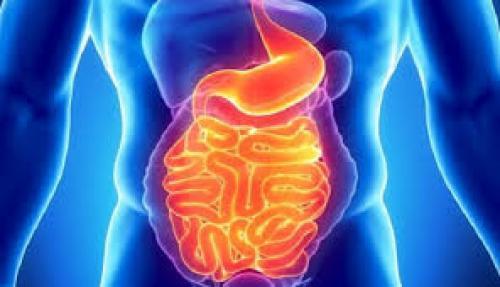 Tahukah Anda Berapa Banyak Racun Yang Ada Di Dalam Tubuh Anda ?
